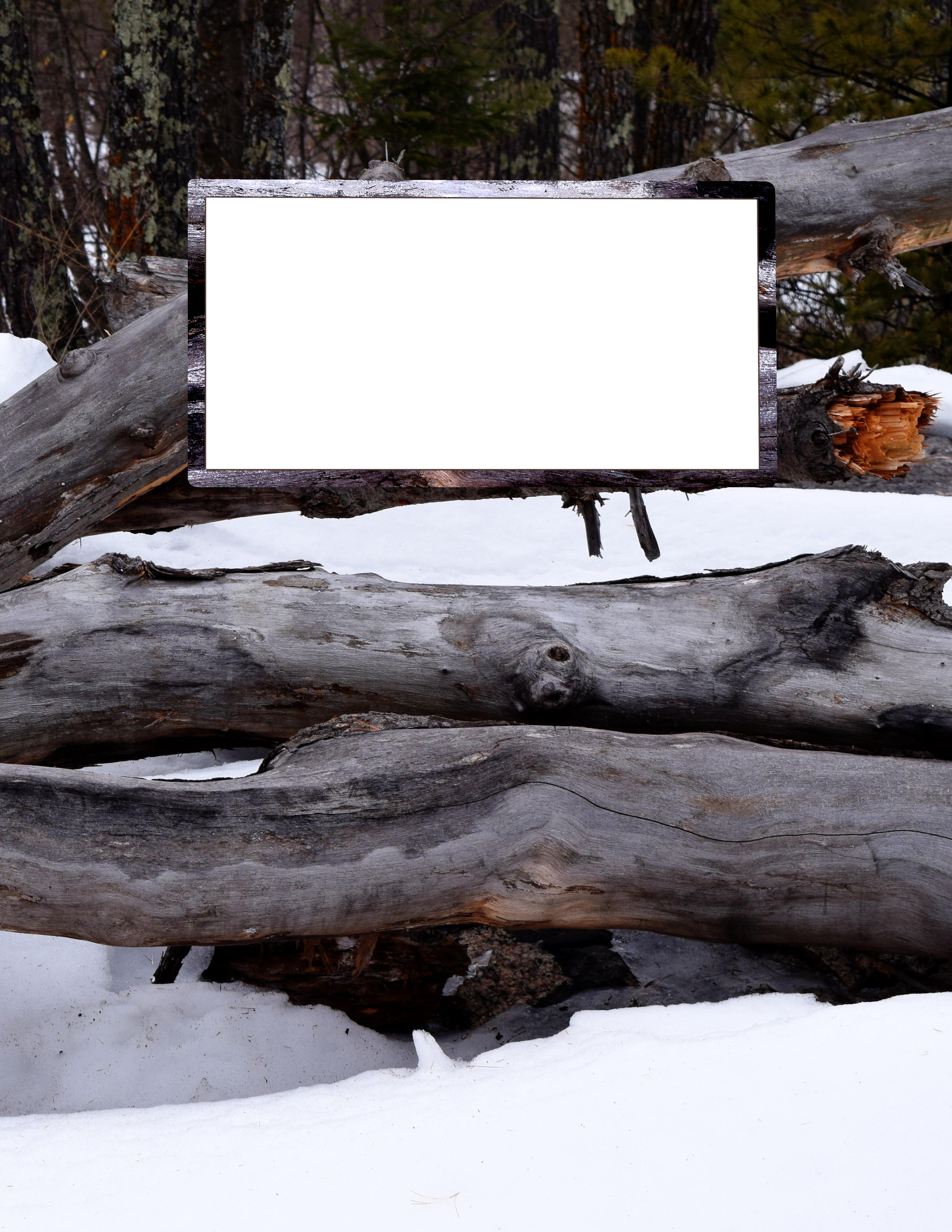Snow Covered Logs Bullet Journal